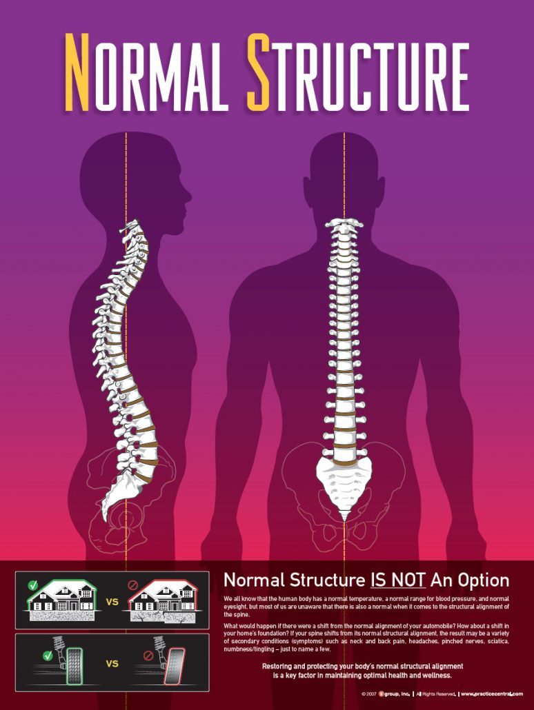normal-structure-web
